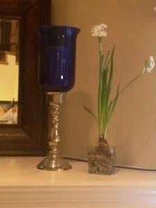 with vase
