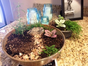 I'm also working on some miniature gardens for the patio. :-)